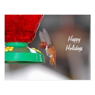 Flying Hummingbird and Hummingbird Feeder Postcard