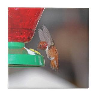Flying Hummingbird and Hummingbird Feeder Ceramic Tiles