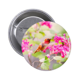 Flying Hummingbird and Red Currant Flowers Pin