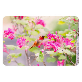 Flying Hummingbird and Red Currant Flowers Flexible Magnets