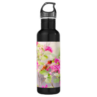 Flying Hummingbird and Red Currant Flowers Stainless Steel Water Bottle