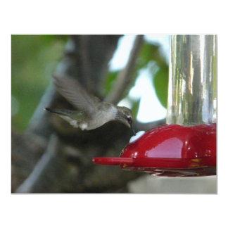 "flying hummingbird 4.25"" x 5.5"" invitation card"