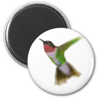 Flying Hummingbird Fridge Magnets