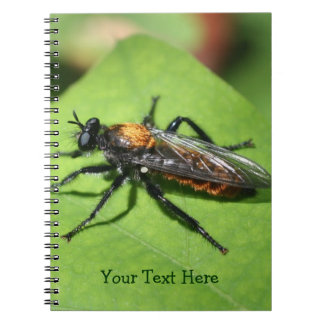 Flying Insect Nature Notebook
