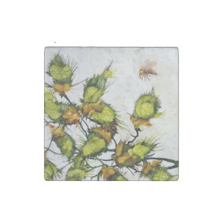Flying Insects four Marble Magnet Set