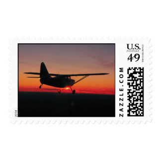 Flying into the sunset Postage Stamp