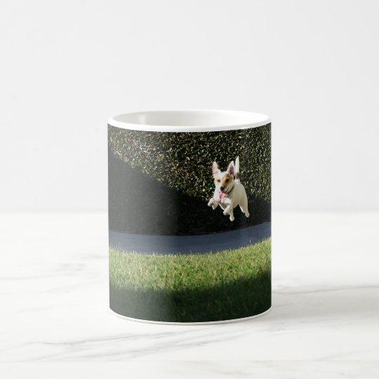 Flying Jack Russell Mug