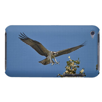 Flying Juvenile Osprey Fish-Eagle Wildlife Photo Barely There iPod Cover