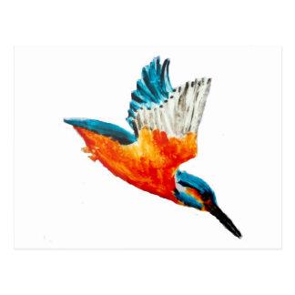 Flying Kingfisher Postcard