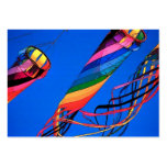 Flying Kites Profile Card Large Business Cards (Pack Of 100)