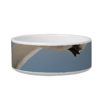 Flying Laughing Gull Cat Water Bowl