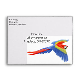 Flying Macaw Parrots Envelope