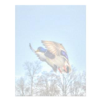 Flying Mallard Duck Drake Wildlife Photo Letterhead