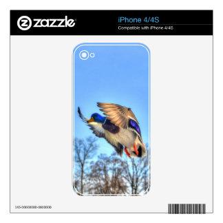 Flying Mallard Duck Drake Wildlife Photo Skin For iPhone 4