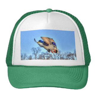 Flying Mallard Duck Drake Wildlife Photo Trucker Hat