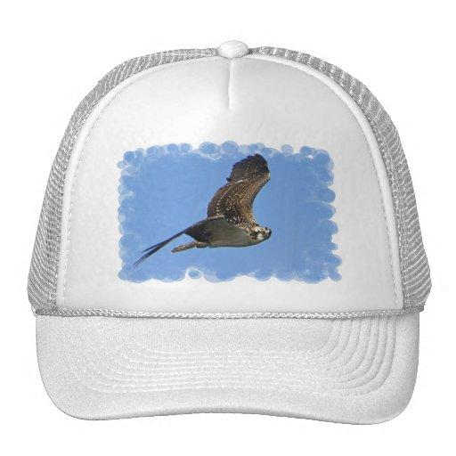Flying Osprey Baseball Hat