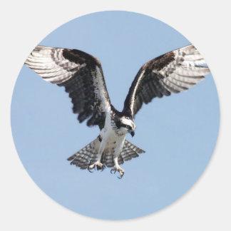 Flying Osprey Classic Round Sticker