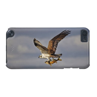 Flying Osprey & Fish 3 Wildlife Photography iPod Touch (5th Generation) Case
