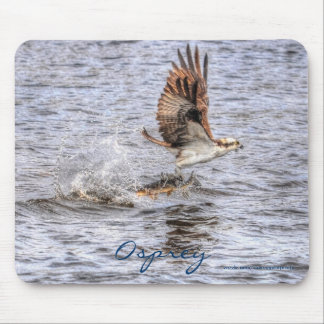 Flying Osprey & Fish HDR Wildlife Photo Gift Mouse Pad