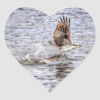 Flying Osprey & Fish HDR Wildlife Photo Gift Heart Stickers