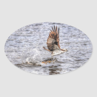 Flying Osprey & Fish HDR Wildlife Photo Gift Oval Stickers