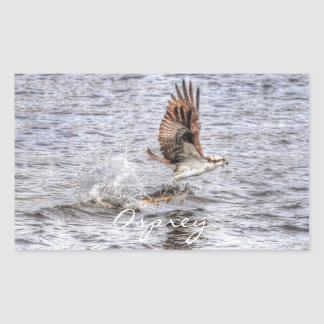 Flying Osprey & Fish HDR Wildlife Photo Gift Rectangle Sticker