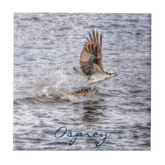 Flying Osprey & Fish HDR Wildlife Photo Gift Tile