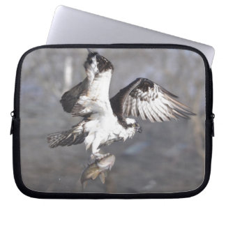 Flying Osprey & Fish Wildlife Photo Scene Computer Sleeve