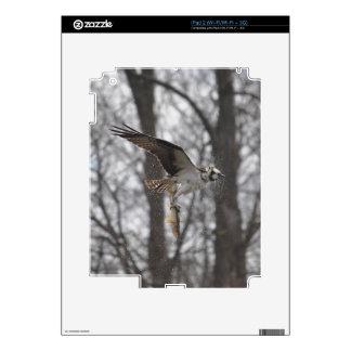 Flying Osprey & Fish Wildlife Photo Scene iPad 2 Skins