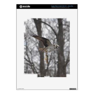 Flying Osprey & Fish Wildlife Photo Scene iPad 3 Decal