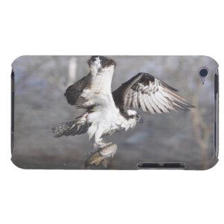 Flying Osprey & Fish Wildlife Photo Scene iPod Case-Mate Case