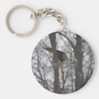 Flying Osprey & Fish Wildlife Photo Scene Keychain