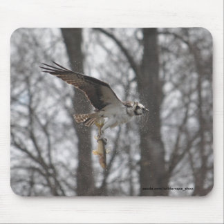 Flying Osprey & Fish Wildlife Photo Scene Mouse Pad