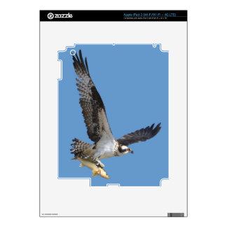 Flying Osprey & Fish Wildlife Photography iPad 3 Skin