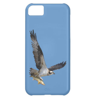 Flying Osprey & Fish Wildlife Photography iPhone 5C Cover