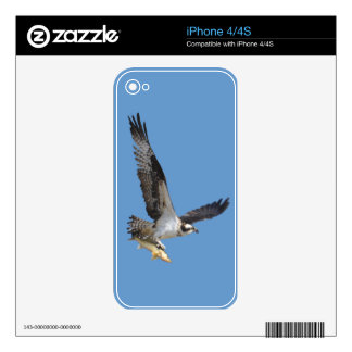 Flying Osprey & Fish Wildlife Photography Skins For The iPhone 4