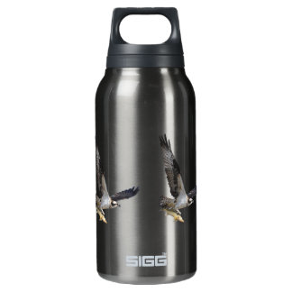 Flying Osprey Hunting for Fish Insulated Water Bottle