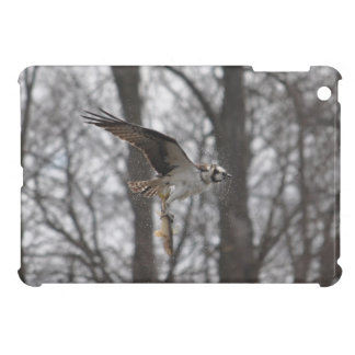 Flying Osprey Hunting for Fish iPad Mini Case