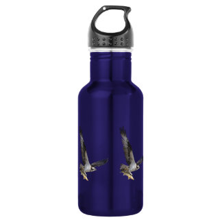 Flying Osprey Hunting for Fish Stainless Steel Water Bottle