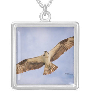 Flying Osprey Necklace