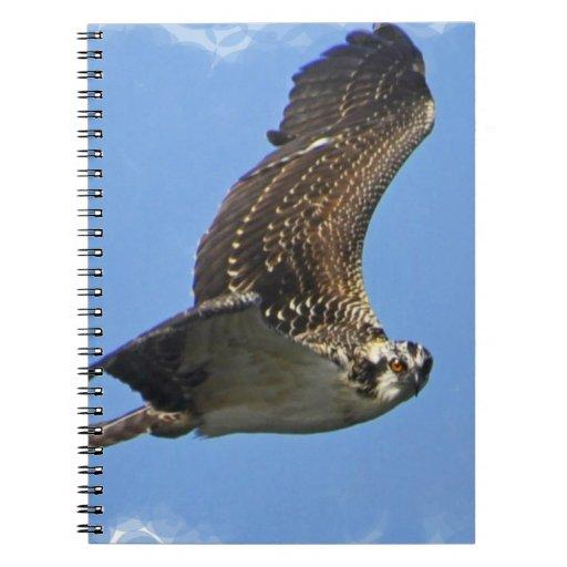 Flying Osprey Notebook