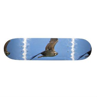 Flying Osprey Skateboard