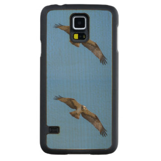 Flying osprey with a target in sight carved® maple galaxy s5 slim case