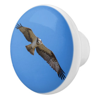Flying osprey with a target in sight ceramic knob