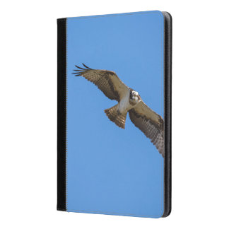 Flying osprey with a target in sight iPad air case