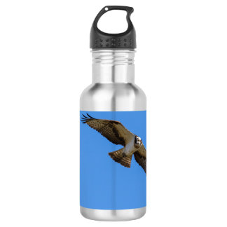 Flying osprey with a target in sight stainless steel water bottle