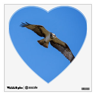 Flying osprey with a target in sight wall sticker