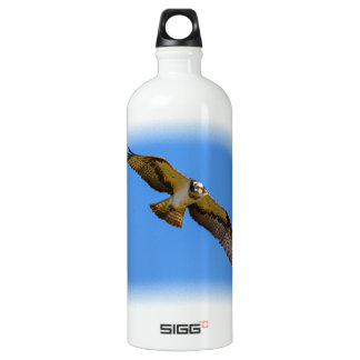Flying osprey with a target in sight water bottle
