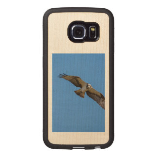 Flying osprey with a target in sight wood phone case