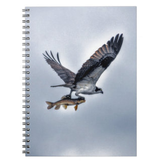 Flying Osprey with Walleye Fish HDR Photo Spiral Notebook